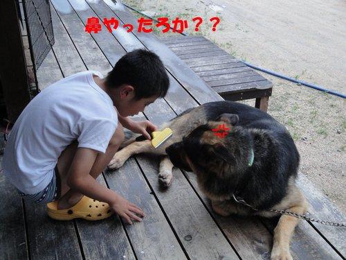 b0113663_10111957.jpg