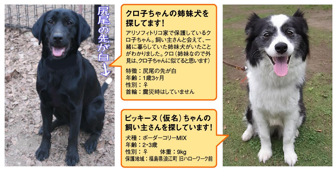 d0113080_2001216.jpg