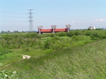 篠津運河(大排水)_f0078286_1053949.jpg
