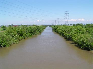 篠津運河(大排水)_f0078286_1072091.jpg
