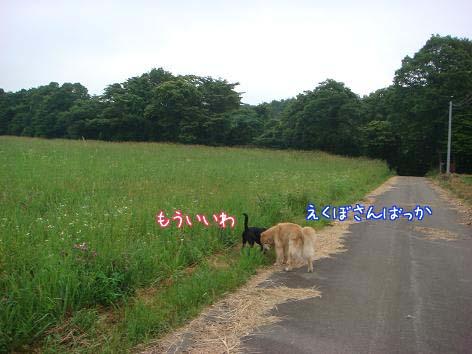 雷雨_f0064906_17562558.jpg