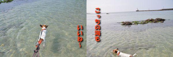 f0203612_2153488.jpg