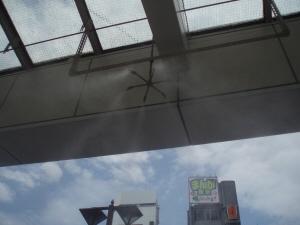 暑いぞ熊谷!_d0091122_17344171.jpg