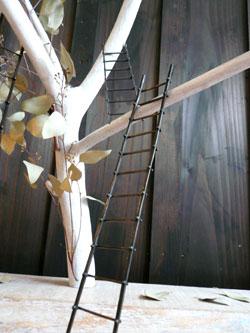 梯子(はしご)の先には…_a0017350_0201856.jpg