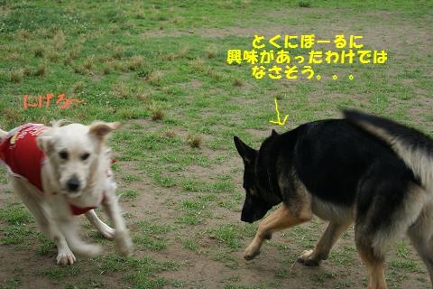 c0214455_15104685.jpg