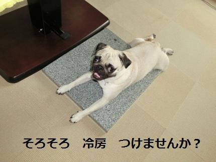 b0190666_18395951.jpg
