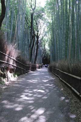 京都散策02〜嵯峨・嵐山〜_c0093196_13291313.jpg