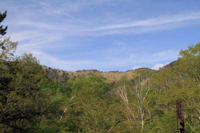 オールフリーと素敵な山歩き@大菩薩嶺  2011.6.5(日)_c0213096_20202070.jpg