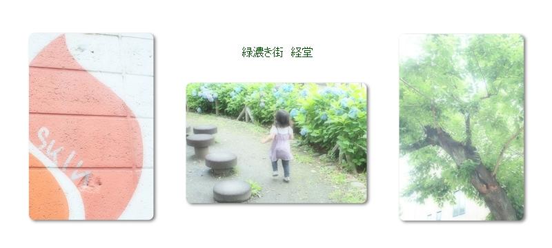 b0136812_1040424.jpg