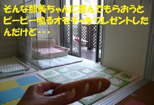f0121712_714352.jpg