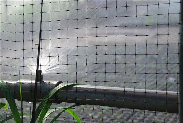 「収穫」_c0116714_11495168.jpg