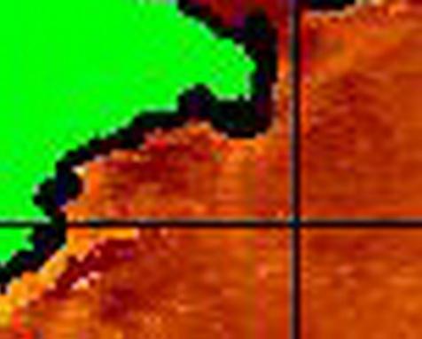 NOAAの 地域別 拡大画像・・・ 【カジキ・マグロトローリング】_f0009039_10261160.jpg
