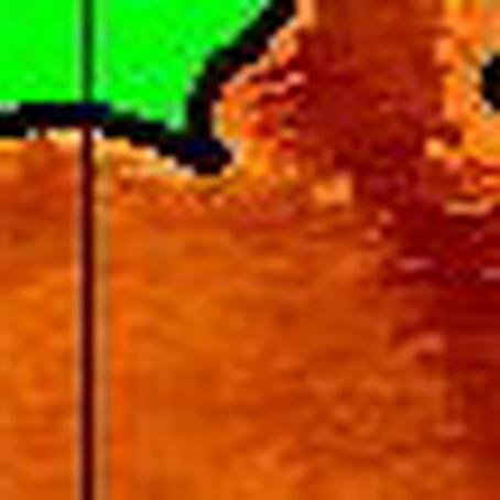 NOAAの 地域別 拡大画像・・・ 【カジキ・マグロトローリング】_f0009039_1026577.jpg