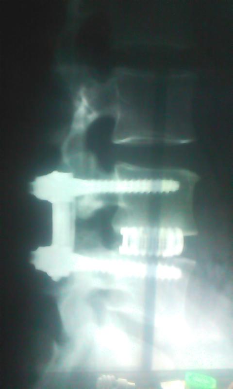 b0164959_17404121.jpg