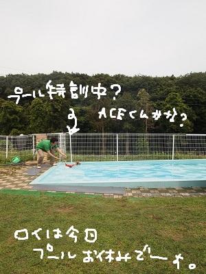 b0092580_012282.jpg