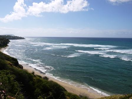 ハワイから戻りました。_c0228895_052088.jpg