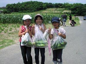 トウモロコシ収穫体験です!_d0120421_18332752.jpg