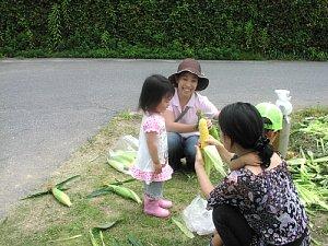 トウモロコシ収穫体験です!_d0120421_18333935.jpg