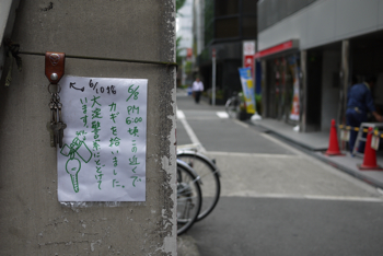 神戸大阪終了_b0220328_1381265.jpg