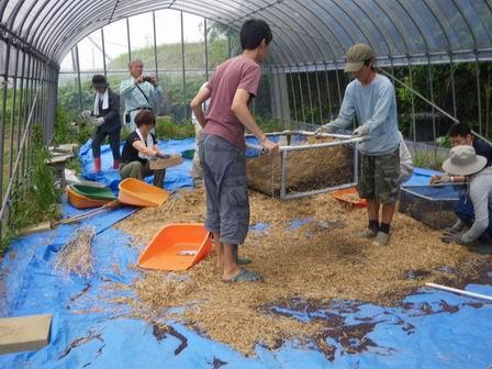 なのはなエコ――ナタネの種の乾燥終了しました_a0123836_1141529.jpg