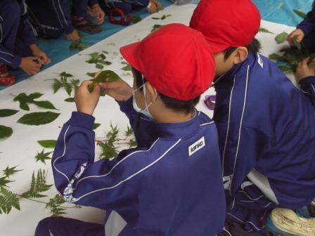 20110629造道小学校_c0216068_1321937.jpg