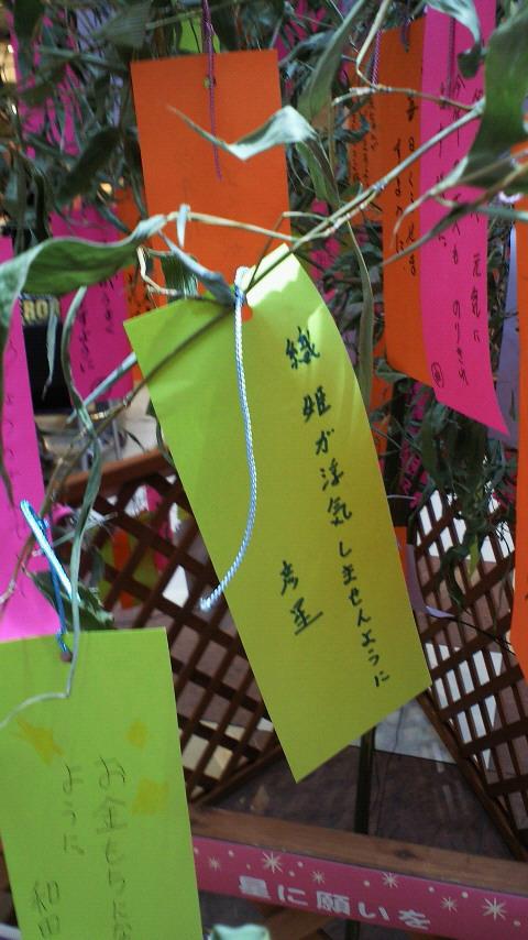 星に願いを(2011)_c0001670_23213570.jpg