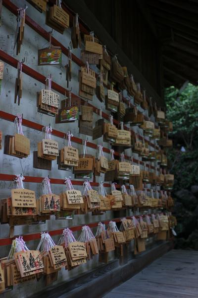 石手寺 娘の安産祈願詣り_e0203309_15555371.jpg