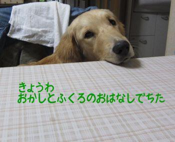 b0008217_10104972.jpg