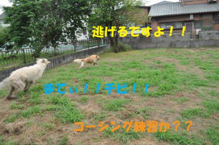 f0176830_18543290.jpg