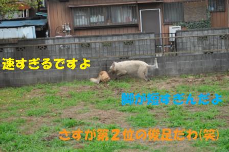 f0176830_18563283.jpg