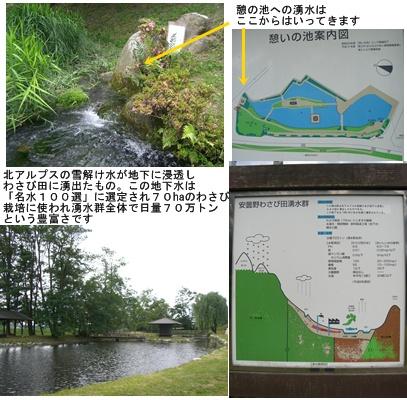 「おひさま」コース(奈良井宿・松本・安曇野)と白馬・栂池 その3_a0084343_14494626.jpg