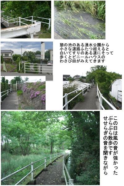 「おひさま」コース(奈良井宿・松本・安曇野)と白馬・栂池 その3_a0084343_174627100.jpg