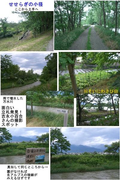 「おひさま」コース(奈良井宿・松本・安曇野)と白馬・栂池 その3_a0084343_1844839.jpg