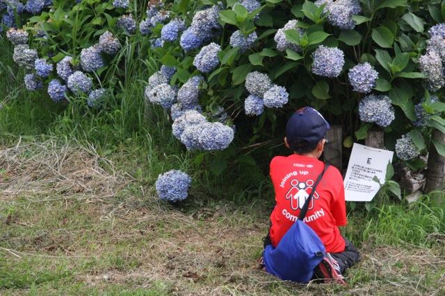 開成町にて環境応援団いっぽ気づきプログラム_c0067646_101059.jpg