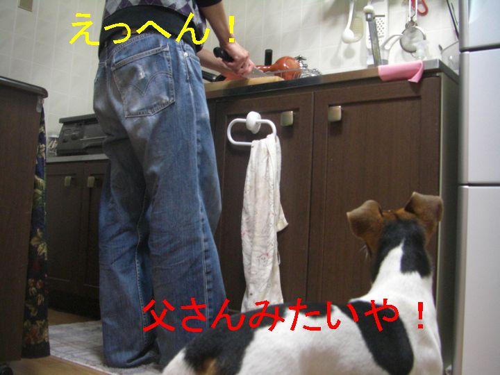 f0053952_17541374.jpg