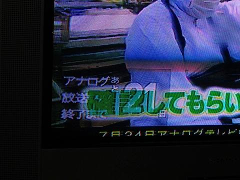 a0114853_19473157.jpg