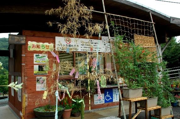 和歌山県植物公園緑花センター _b0093754_23405741.jpg