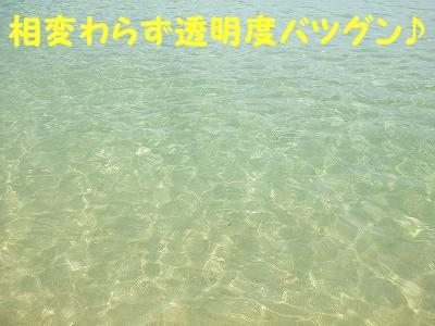 a0104162_21463153.jpg