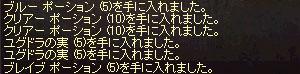 b0048563_20555394.jpg