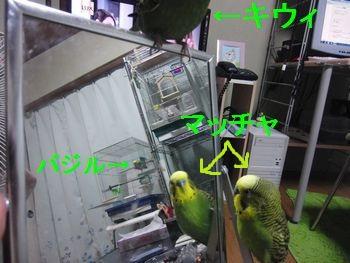 f0196665_022784.jpg