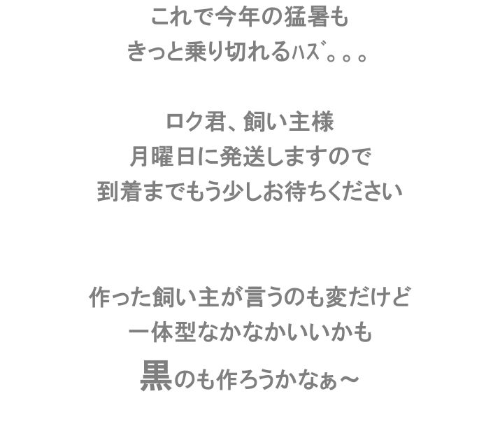 e0199784_1983497.jpg