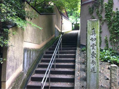 桜澤記念館_c0125702_17234029.jpg