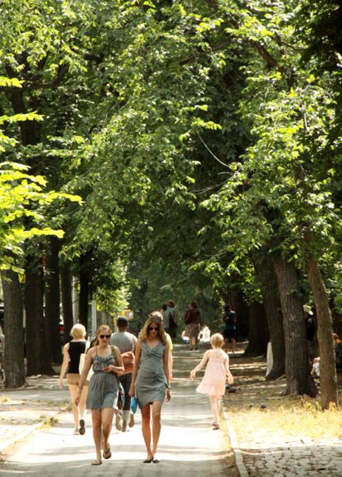 夏のニューヨークのオススメお散歩コース、ミュージアム・マイル_b0007805_22362393.jpg