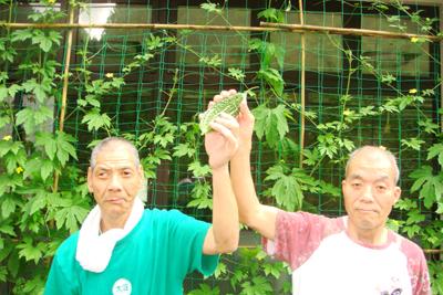 7/2ゴーヤの収穫☆_a0154110_13303054.jpg