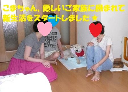 f0121712_13291635.jpg