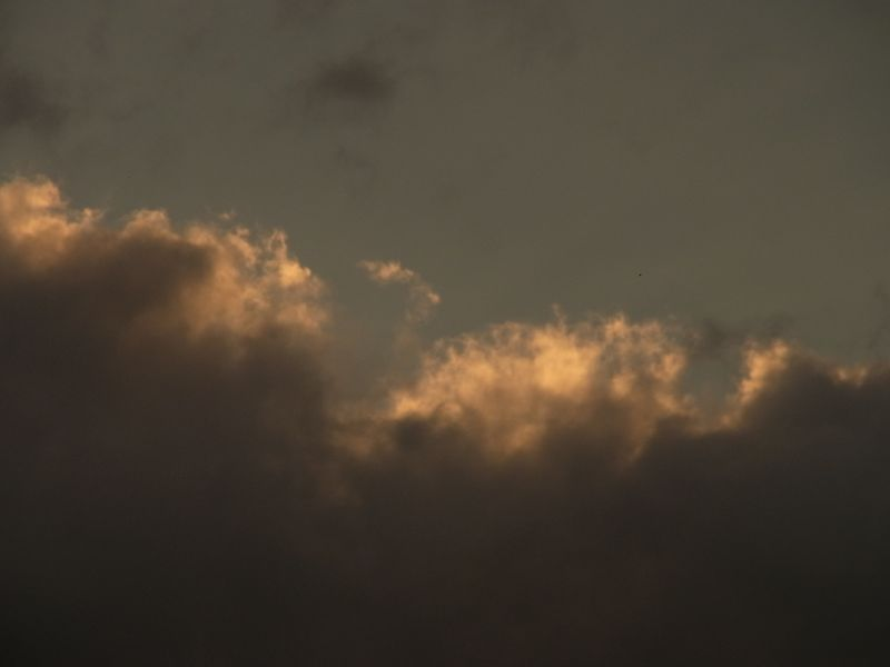 大雨の後_c0025115_20194322.jpg