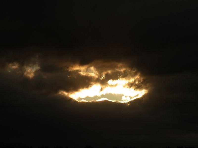 大雨の後_c0025115_20202224.jpg
