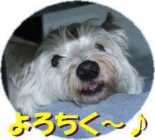 f0084422_0221611.jpg