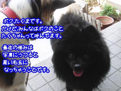 b0185650_218987.jpg