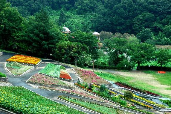 和歌山県植物公園緑花センター _b0093754_23481284.jpg